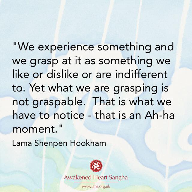 Lama Shenpen discusses working with desire, aversion and indifference with a meditation student