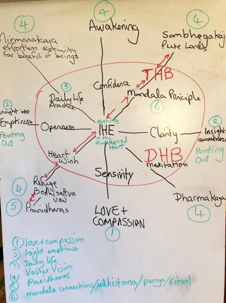 LAH LSG diagram
